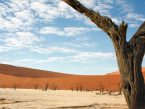 Deadvlei with clouds