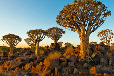 Self Drive Tour Namibia