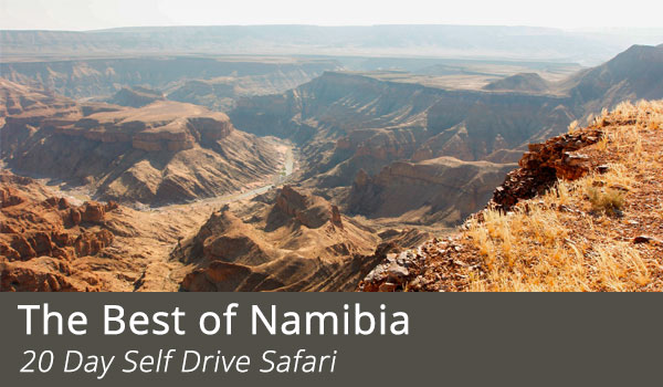 Bast-of-Namibia