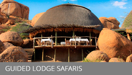 Nambia Lodge Safaris