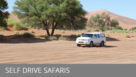 Namibia Self-Drive Safaris